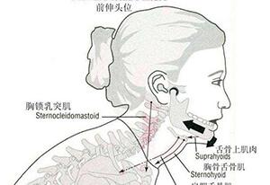 颞下颌关节疾病